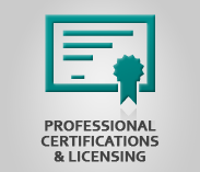 """Professional Certifications & Licensing"" (text) Sector Image with artwork of a certificate"